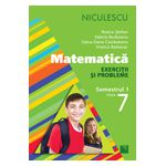 Matematică 2013 - Exerciţii şi probleme pentru clasa a VII-a, semestrul I