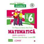MATEMATICA. ALGEBRA, GEOMETRIE. CLASA A VI-A- MATE 2000 STANDARD