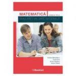 Matematica, pentru clasa a VII-a, Simulare Evaluare Nationala - Rodica Manolescu, Paula Nica