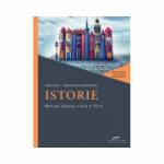 Istorie. Manual pentru clasa a VII-a - Stan STOICA, Dragos BECHERU