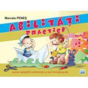 Abilitati practice clasa I