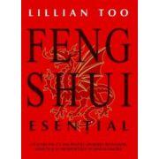 Feng Shui Esential.