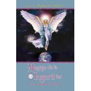 Mesaje de la îngerii tăi. Ce vor îngerii tăi să ştii (Cartea bestseller)