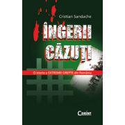 INGERII CAZUTI
