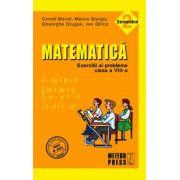 Matematica. Exercitii si probleme. Clasa a VIII-a, semestrul II 2010-2011
