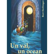 UN VAL, UN OCEAN - EXPERIENTE SI REFLECTII