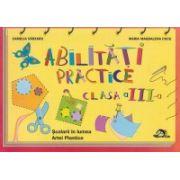 Abilitati practice Clasa III