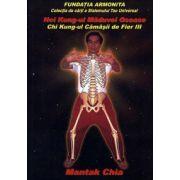 Nei Kung-ul măduvei osoase - Chi Kung-ul cămăşii de fier III