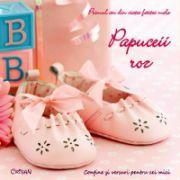 Papuceii roz - Primul an din viata fetitei mele