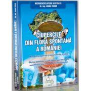Ciupercile din flora spontana a Romaniei - Microenciclopedie ilustrata