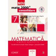 Mate 2012 Consolidare MATEMATICA. ALGEBRA, GEOMETRIE. CLASA A VII-A. PARTEA I