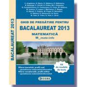 Ghid de pregatire pentru BACALAUREAT 2013 - MATEMATICA M_mate-info M1