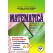 Matematica clasa a IX - a: algebra, geometrie, trigonometrie ; sinteze de teorie, exercitii si probleme