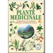 Plante medicinale. Recunoaştere şi uz terapeutic, alimentar, aromatizant, cosmetic