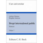 Drept international public. Sinteze Editia 7