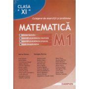 Culegere de exercitii si probleme Matematica M1, Clasa a XI-a