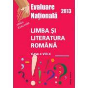 Evaluare nationala 2013 - Limba si literatura romana, clasa a VIII-a