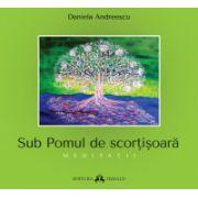 Sub pomul de scortisoara - Meditatii