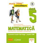 Mate 2013 Consolidare - ALGEBRA, GEOMETRIE. CLASA A V-A. PARTEA I