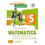 Mate 2013 Standard - ALGEBRA, GEOMETRIE - CLASA A V-A