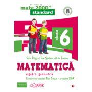 Mate 2013 Standard - ALGEBRA, GEOMETRIE - CLASA A VI-A