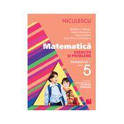Matematică 2013 - Exerciţii şi probleme pentru clasa a V-a, semestrul I