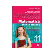 Matematică 2013 clasa a XI-a - Breviar teoretic cu exerciţii şi probleme propuse şi rezolvate - teste de evaluare