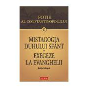 Mistagogia Duhului Sfant - Exegeze la Evanghelii