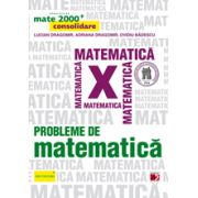 Mate 2013 Consolidare - PROBLEME DE MATEMATICA PENTRU CLASA A X-A