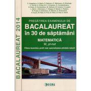 BACALAUREAT 2014 Matematica M_Stiintele Naturii - Pregatirea examenului in 30 de saptamani