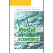 Modul de gandire economic Teste si aplicatii