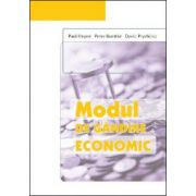 Modul de gandire economic