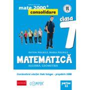 Mate 2013 - 2014 Consolidare - ALGEBRA, GEOMETRIE. CLASA A VII-A. PARTEA II