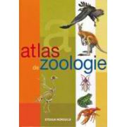 Atlas Zoologic - Cartonat