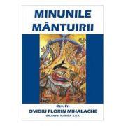 Minunile Mantuirii - Ovidiu Florin Mihalache