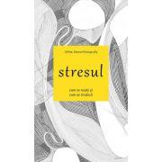 Stresul cum se naste cum se vindeca - Arhim. Simeon Kraiopoulos
