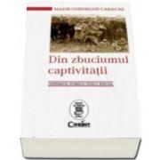 Din zbuciumul captivitatii. Centenarul Primului Razboi Mondial - De la 3 noiembrie 1916 pana la 30 iunie 1918