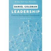 Leadership. Puterea inteligentei emotionale - Daniel Goleman