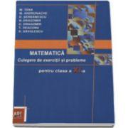 Matematica - Culegere de exercitii si probleme pentru clasa a XI-a (Marcel Tena)