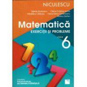 Matematica - Exercitii si Probleme pentru clasa a 6-a