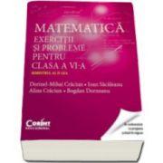 Matematica. Exercitii si probleme pentru clasa a VI-a. Semestrul al II-lea (Dorinel-Mihai Craciun)