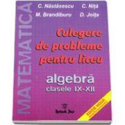 Culegere de probleme pentru liceu. Algebra clasele IX-XII - C. Nastasescu si C. Nita