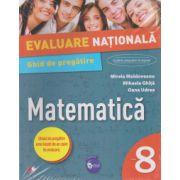 Evaluare nationala. Matematica. Ghid de pregatire. Clasa a VIII-a - 2017