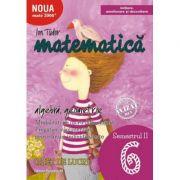 Matematică. Algebră, geometrie. Caiet de lucru. Clasa a VI-a. Semestrul II. Inițiere - MATE 2000-INIȚIERE - 2018