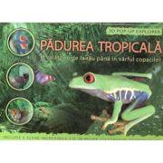 Padurea tropicala - 3D Pop-up Explorer. O calatorie de la rau pana in varful copacilor