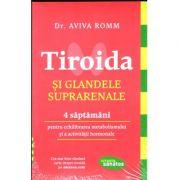 Tiroida și glandele suprarenale, 4 saptamani pentru echilibrarea metabolismului și activității hormonale
