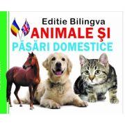Pliant Animale si Pasari domestice, Editie bilingva Romana - Engleza