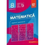 Matematica. Algebra, geometrie. Clasa a VIII-a. Consolidare. Partea a II-a - Anton Negrila, Maria Negrila