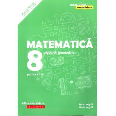 Matematica 2019 Consolidare - Aritmetica, Algebra, Geometrie - Clasa A VIII-A - Semestrul II - Avizat M. E. N.